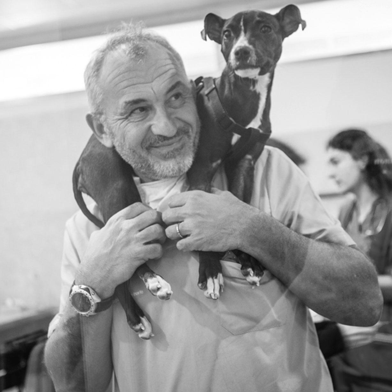 Dott. Stefano Nicoli
